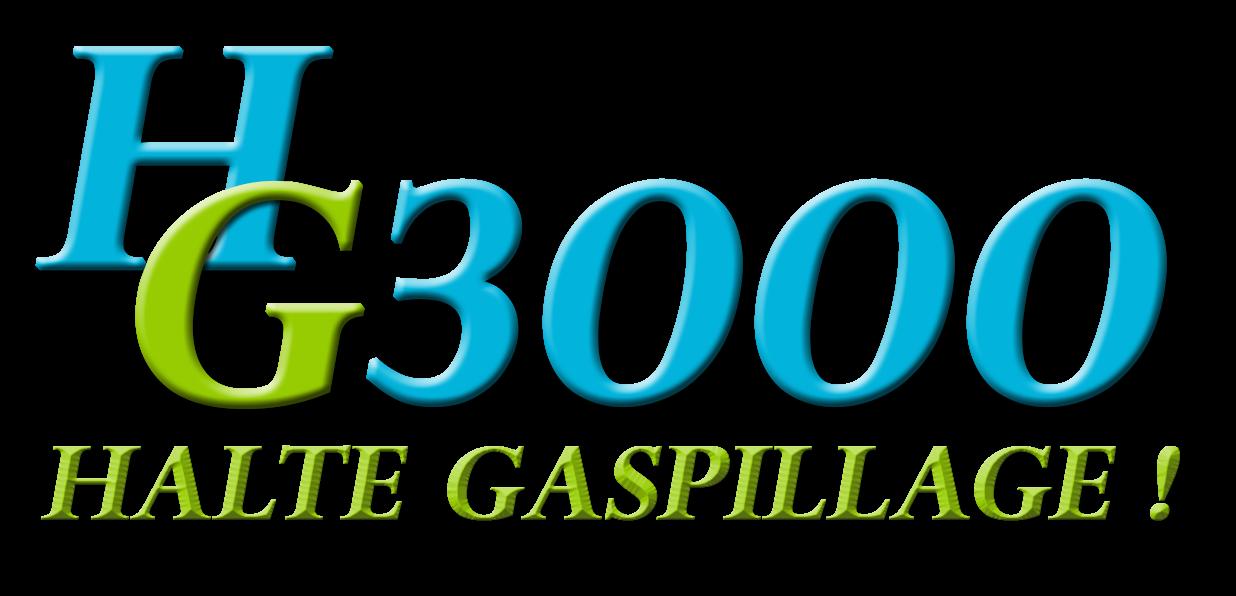 logo-hg3000